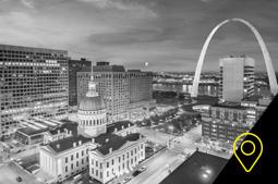 dgx store St. Louis